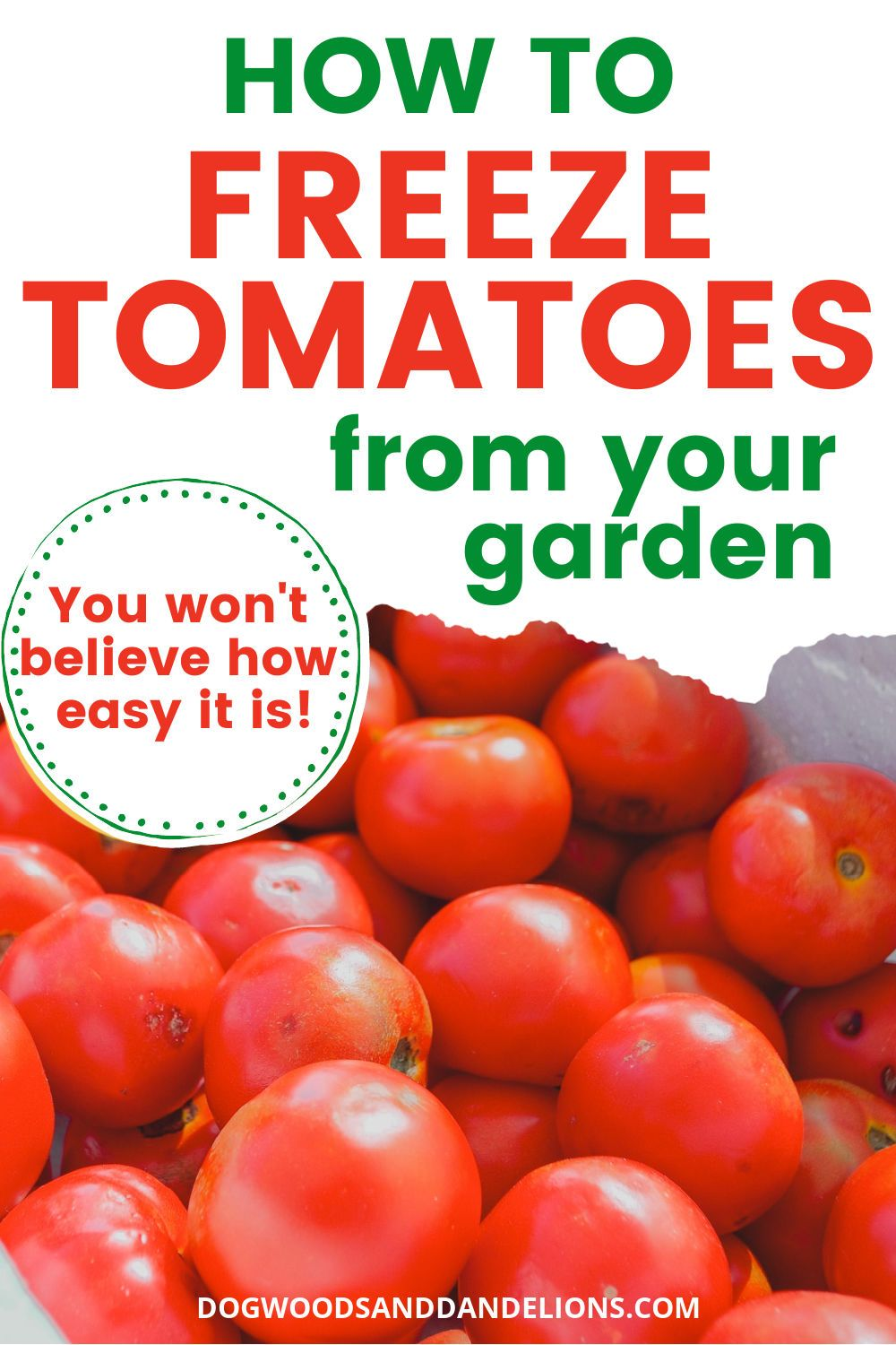 Freezing tomatoesthe simplest way to preserve tomatoes in