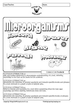 Microorganisms Reading Activity Pack is a science themed