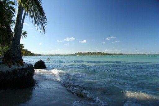 Pernambuco(Carneiros beach)