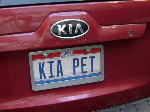 Yeah Yeah Trying To Be Funny With Kia Pet I Think A Chia Pet Might Be Better Lol Vanity License Plates Vanity License Plate Vanity Plate