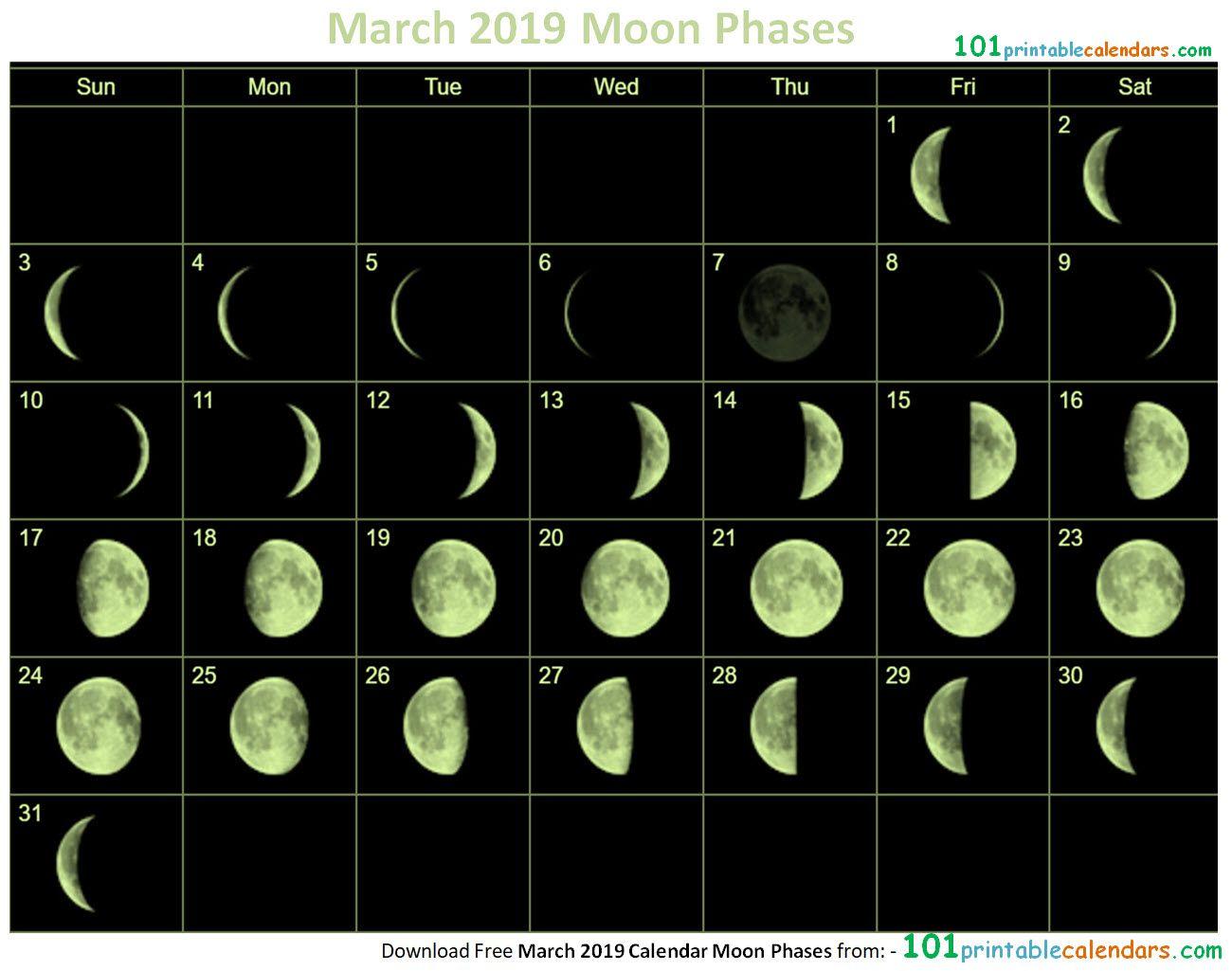 March 2019 Calendar Moon Phases 2019 Calendar Moon Calendar
