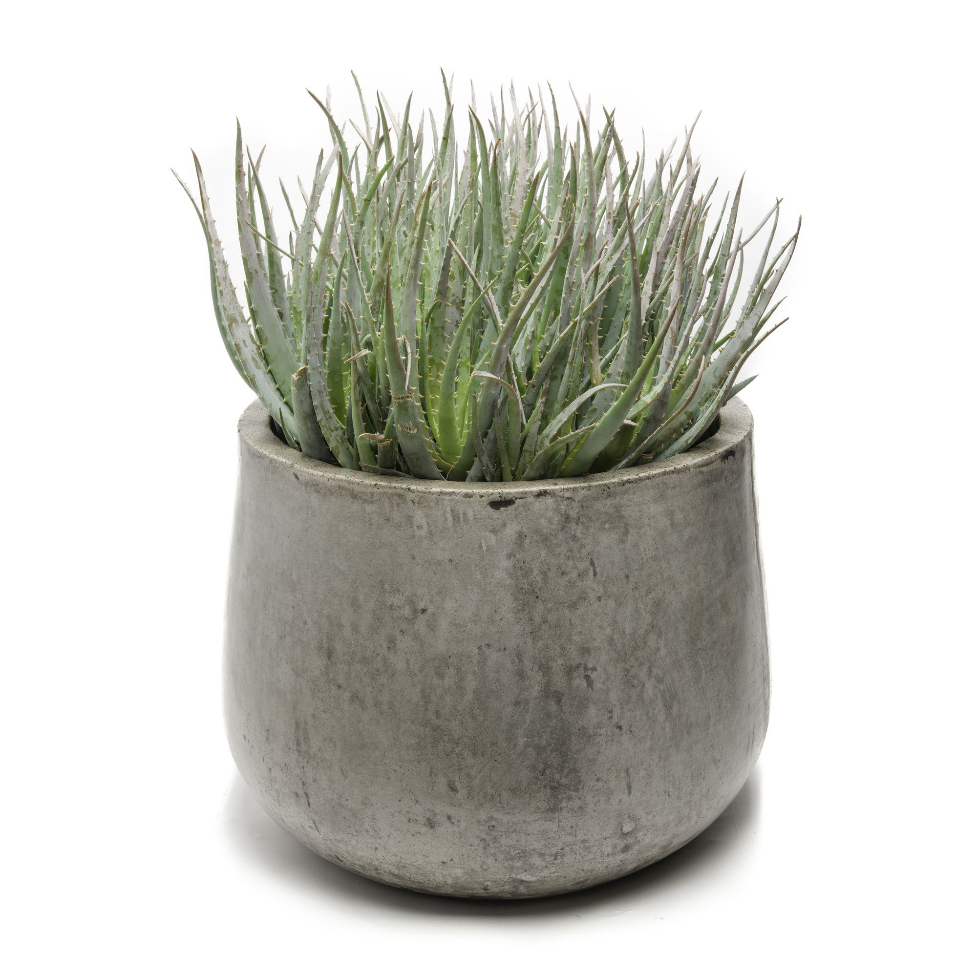 Samai Composite Pot Planter