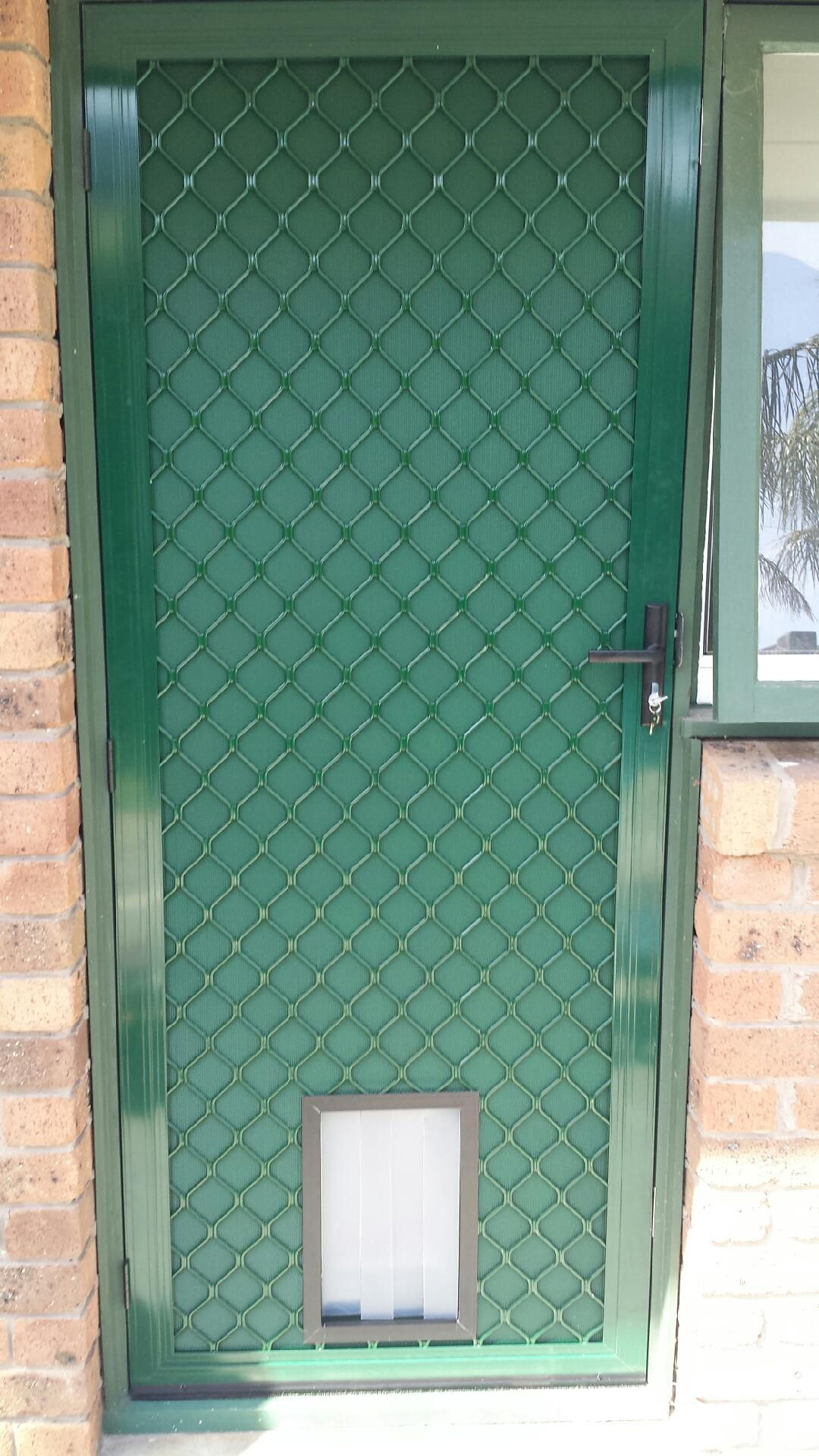 Aluminum security door with one way vision mesh, and cat
