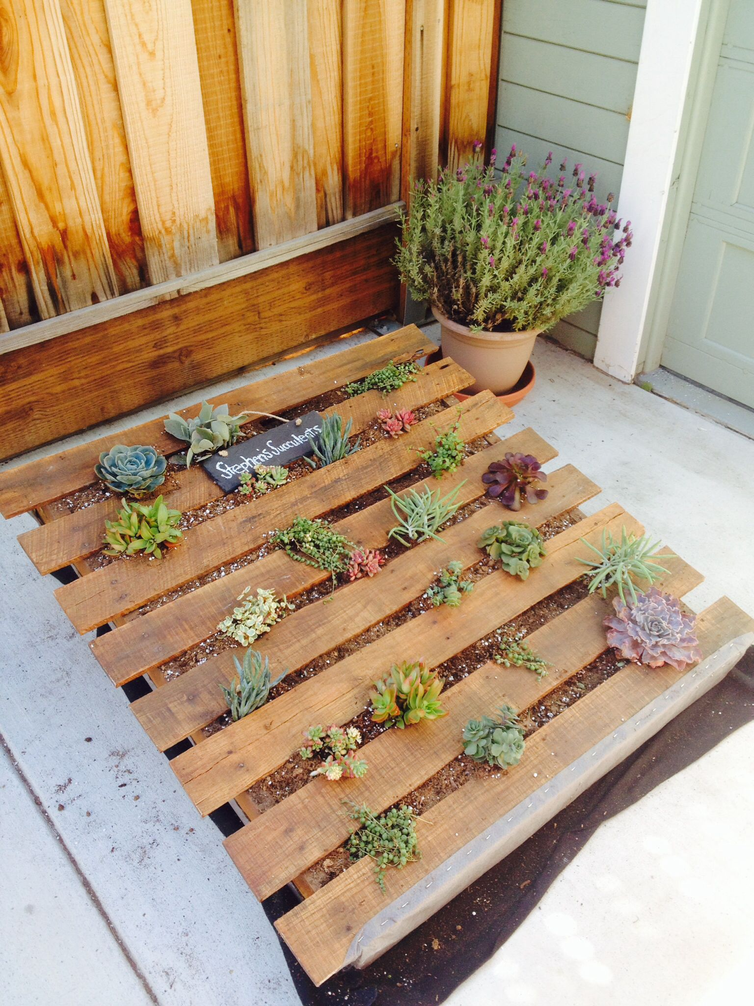Succulent And Plants Vertical Pallet Garden Planter Or Bed 400 x 300