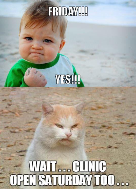 Veterinary Funny Vet Tech Humor Vet Tech Student Veterinary Humor