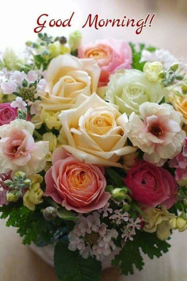 Pin Von Herbert Auf Rose Schöne Blumen Guten Morgen Und