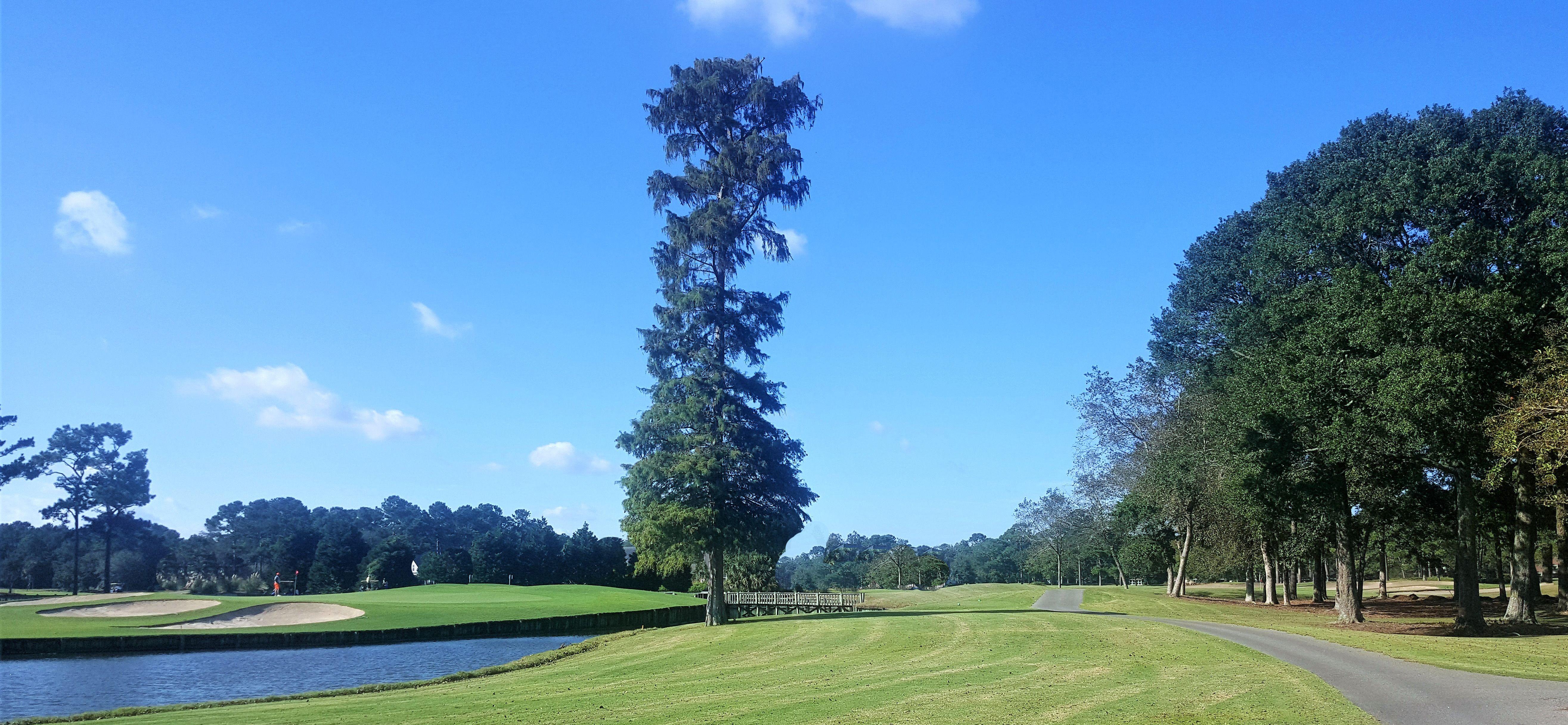 Pin on Golf Getaways