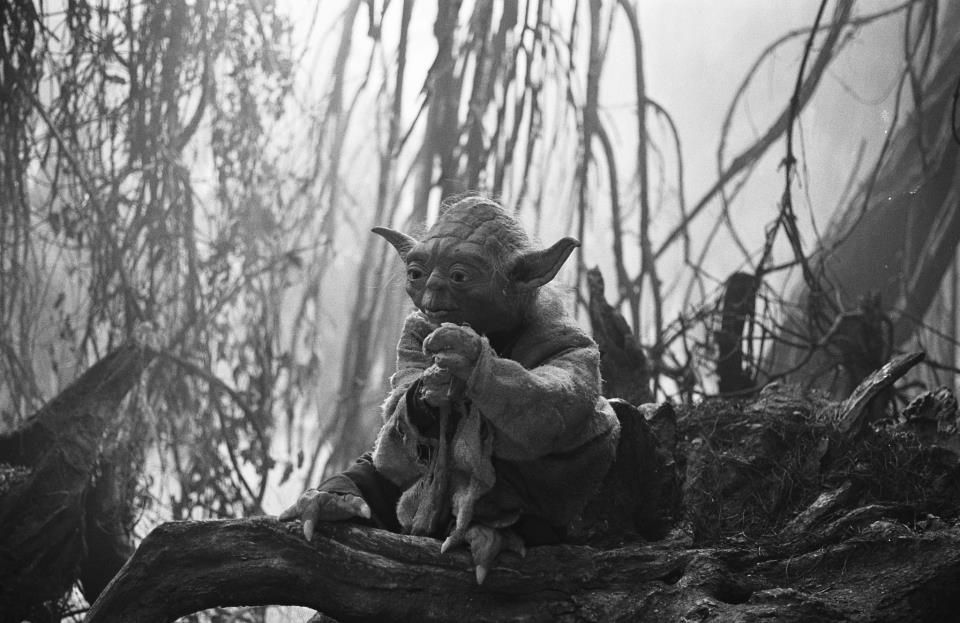 Adventure Excitement A Jedi Craves Not These Things Cinema