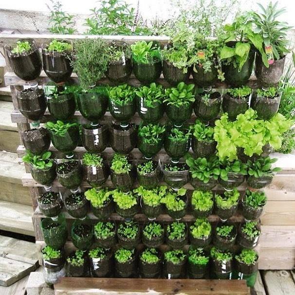 5 Vertical Vegetable Garden Ideas For Beginners: Pin By Jose Castaneda On Project Garden