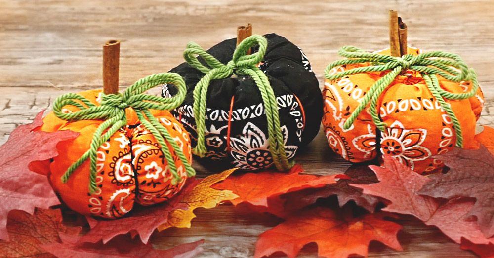 Kết quả hình ảnh cho Country Bumpkin Halloween Bandana Pumpkin