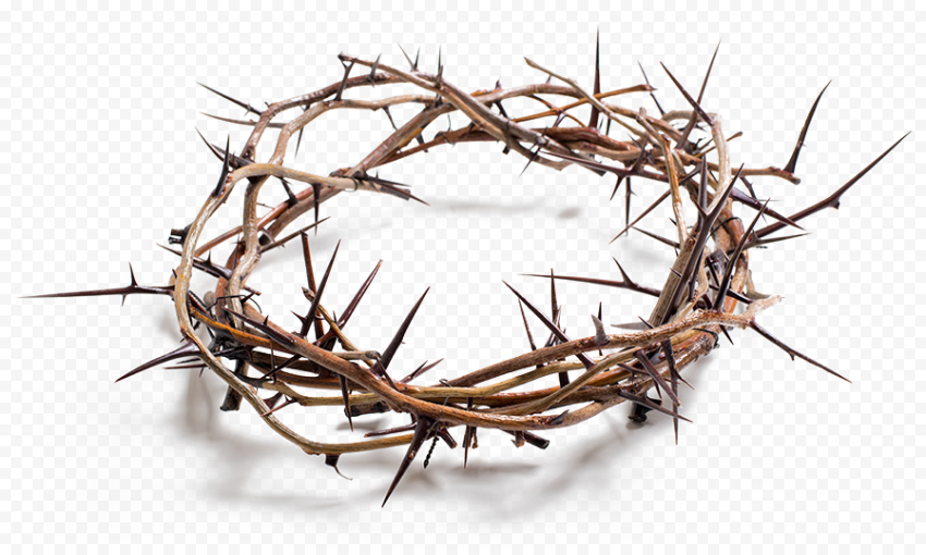 Crown Of Thorns Christian Spines Good Friday Crown Of Thorns Thorns Good Friday