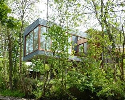 Natural Minimalist House Design Desain Rumah Minimalis