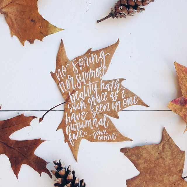 Delta Breezes: Jess Keala Find Leaves, Paint Quotes On Them, Attach Them To  Canvas?