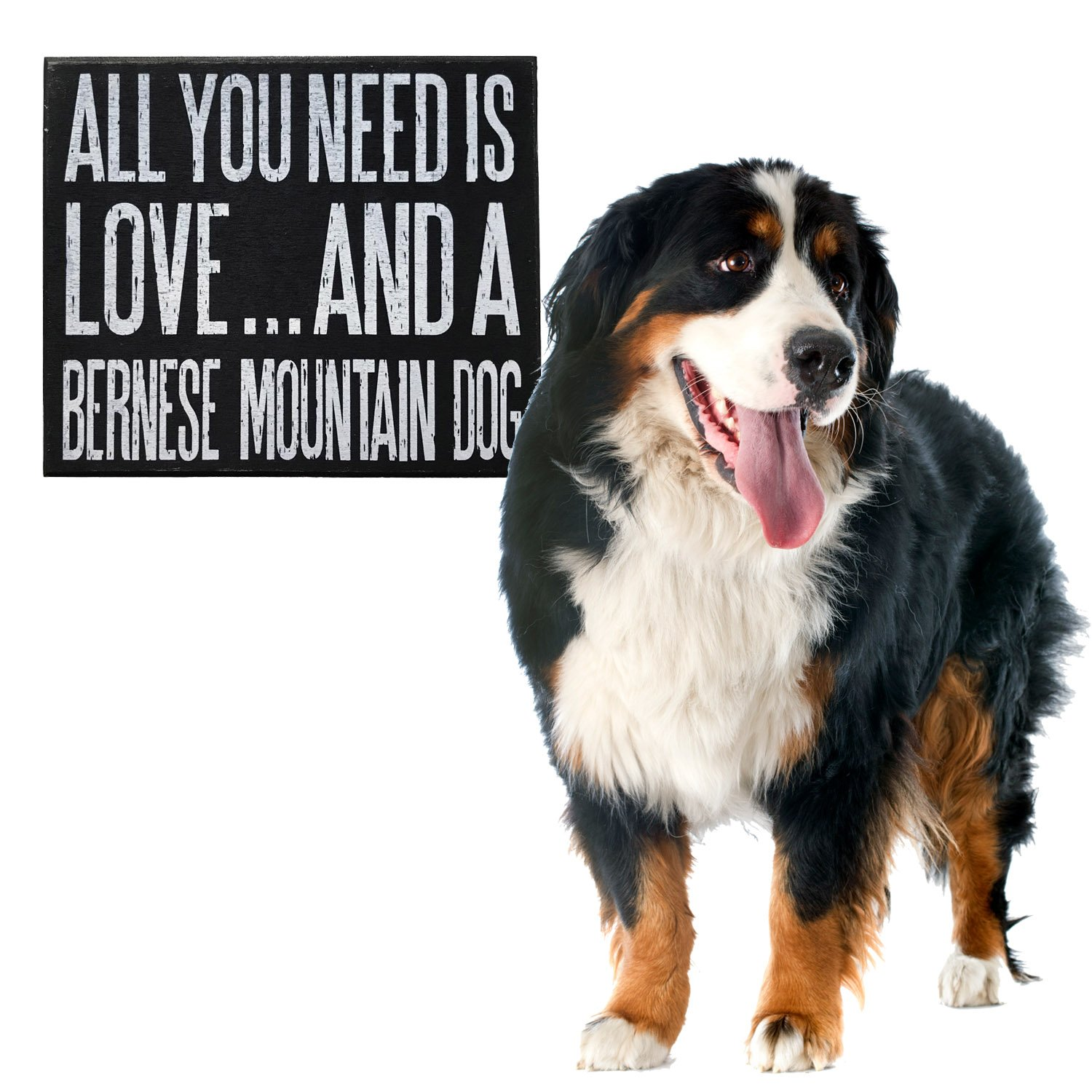 All You Need Is Love And A Bernese Mountain Dog Wooden Sign