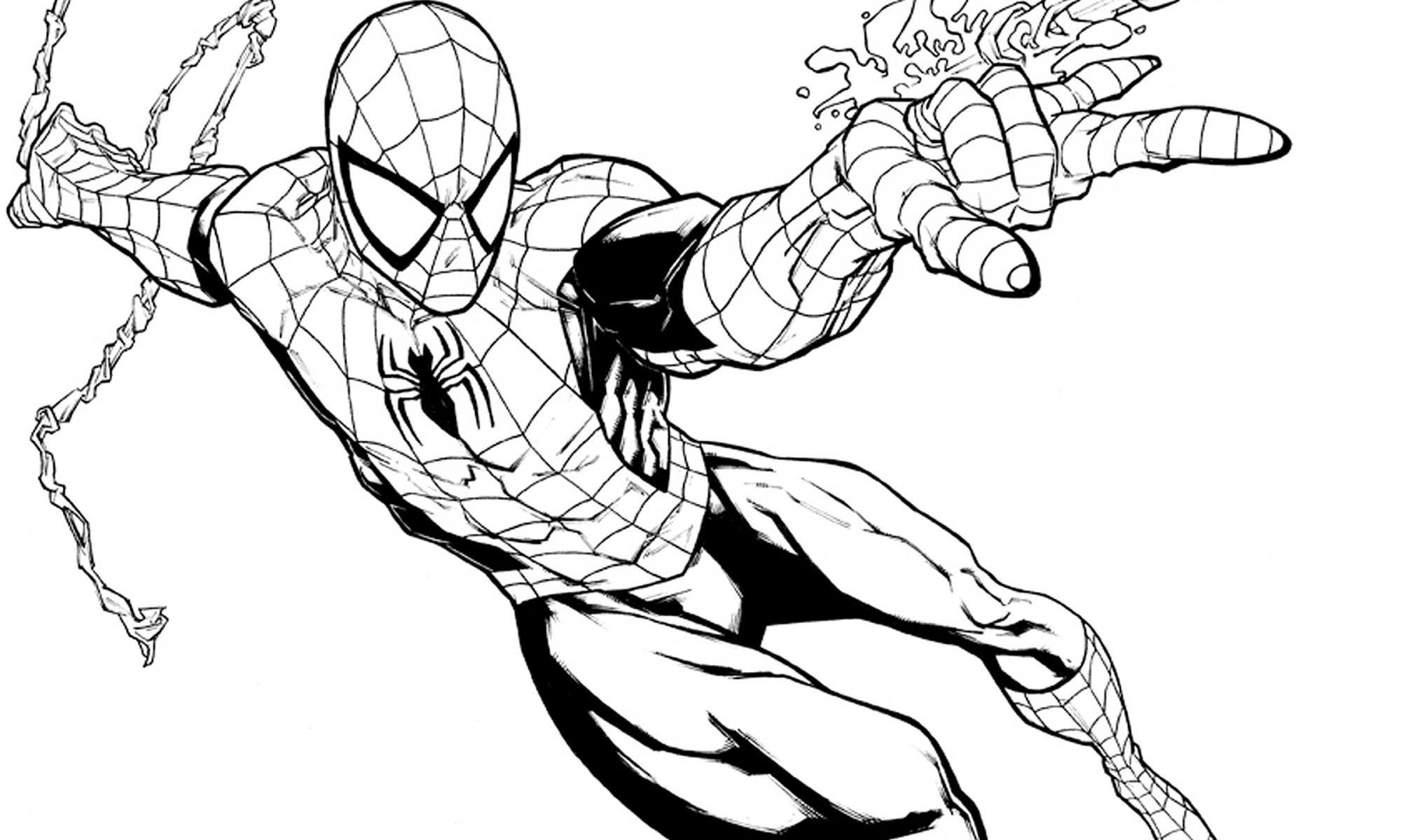 Dibujos De Spiderman Para Coloreare Coloriage Super Heros Coloriage Spiderman A Imprimer Coloriage Spiderman
