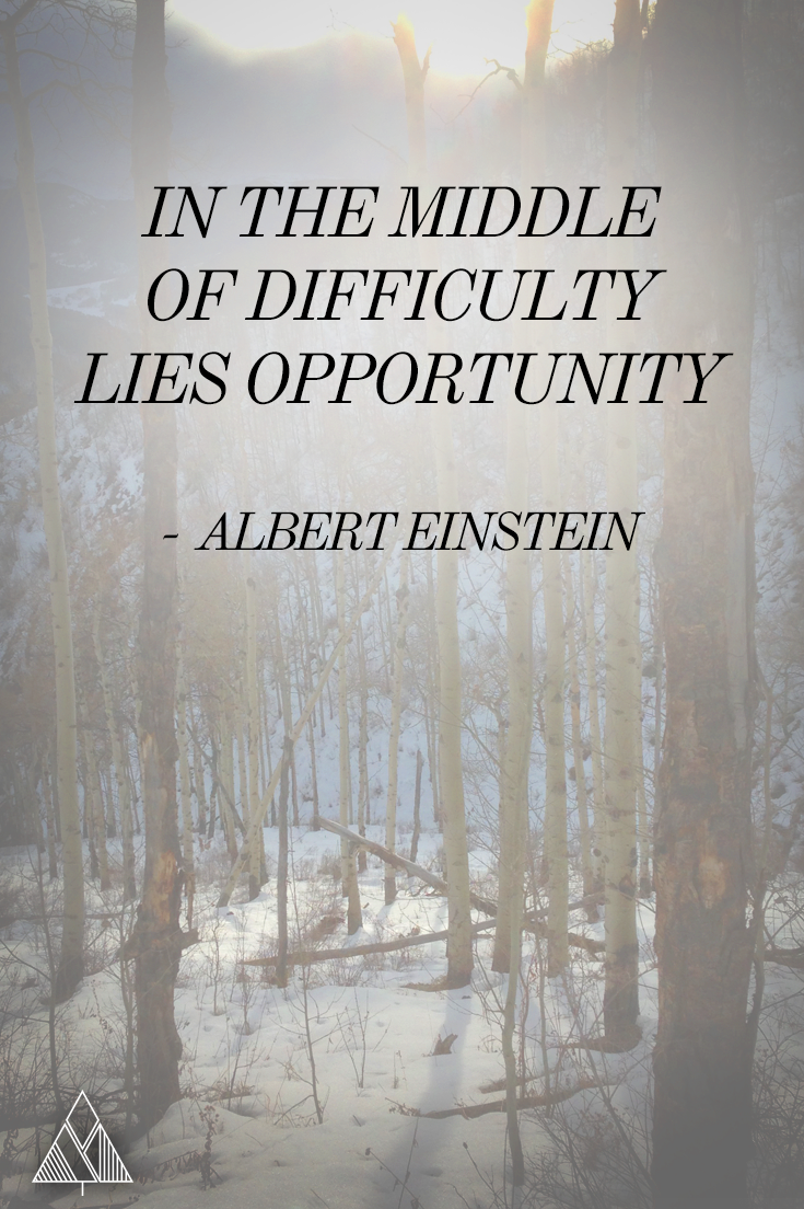 Hero Quotes 105 Inspirational Yoga Quotes  Inspirational Albert Einstein And