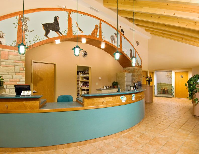 Mural Art Hospital Design Maybe Not This Design But A Mural Idea Above The Reception Desk Instead Of Blank Wall Hospital Design Pet Clinic Vet Clinics
