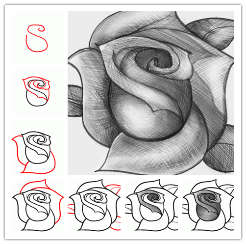 Wonderful Idea For Drawing A Beautiful Rose | Art exercises