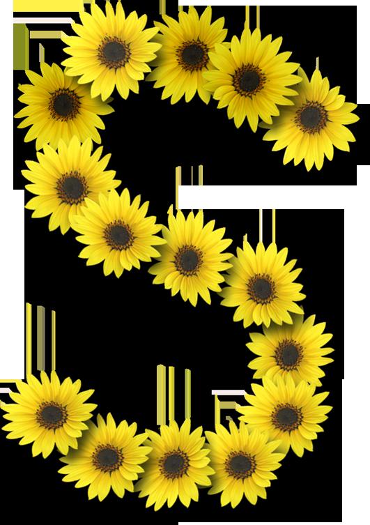Alfabeto sunflowers .....S   Floral border design ...