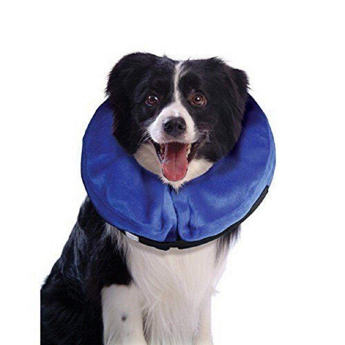 Egmy Pet Products Pet Collar Dog Cats Collar Super Toughness