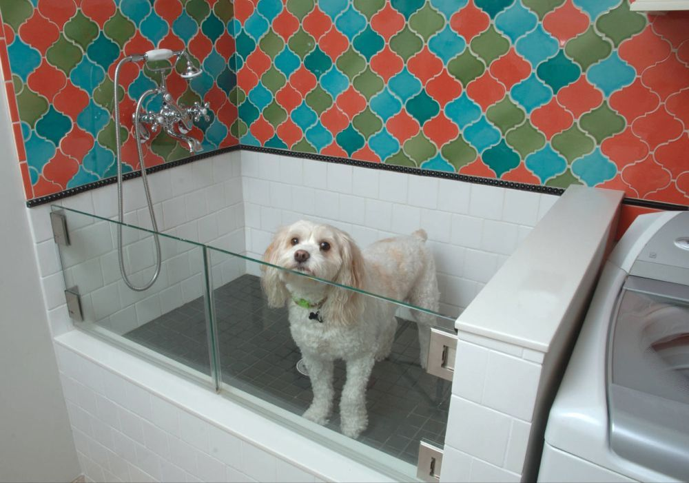 Dog Washing Station Outstanding Dog Shower Ideas Pet Washing Stations Dog Washing Station In 2020 Dog Washing Station Pet Washing Station Dog Shower