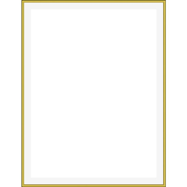 thin gold frame -... ❤ liked on Polyvore featuring frames ...