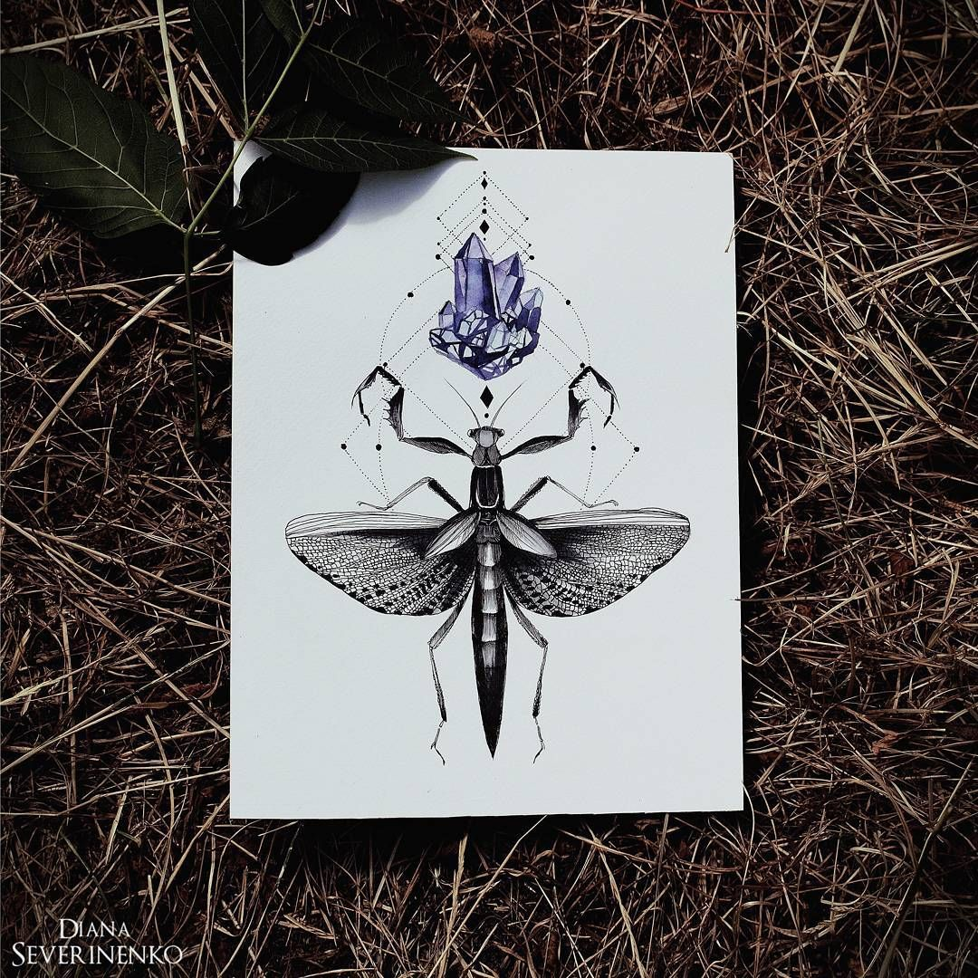See This Instagram Photo By Dianaseverinenko 5 003 Likes Pattern Art Flower Drawing Drawings