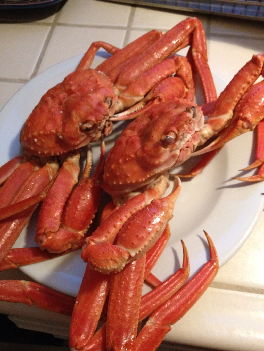 Cooked wild canadian snow crab
