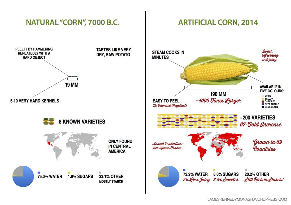Evolution of Corn