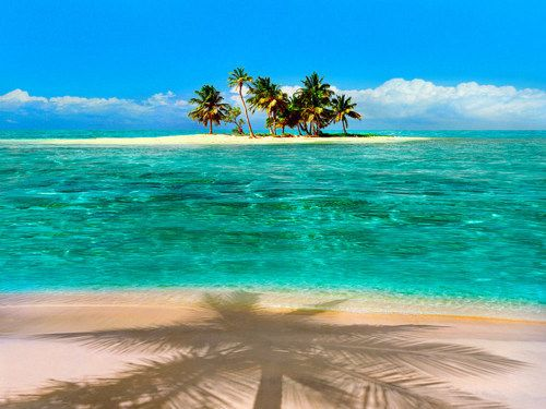 Palm Shadow, The Maldives Islands