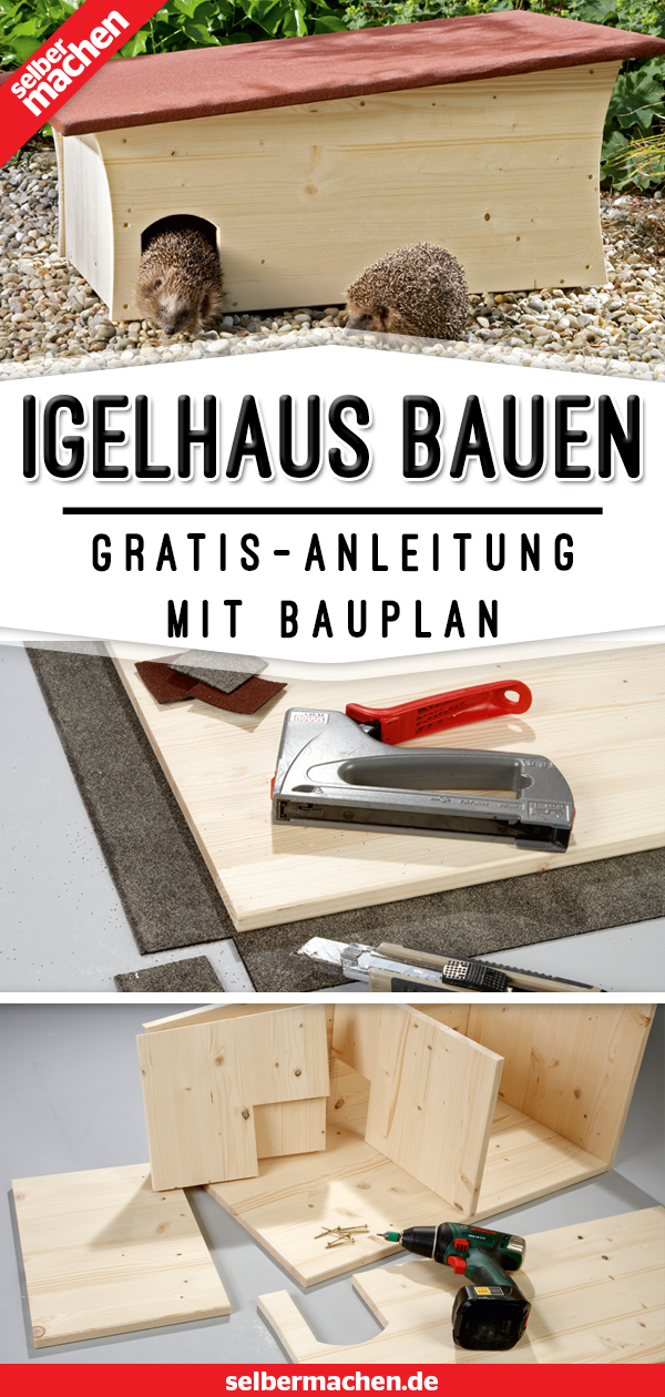 Igelhaus bauen: So geht's richtig