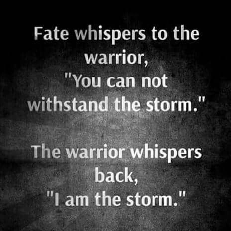 I Am The Storm Storm Quotes Me Quotes Words Of Wisdom When i got offered a job at the night firm, i had no idea how i am the storm goes basically the same. i am the storm storm quotes me