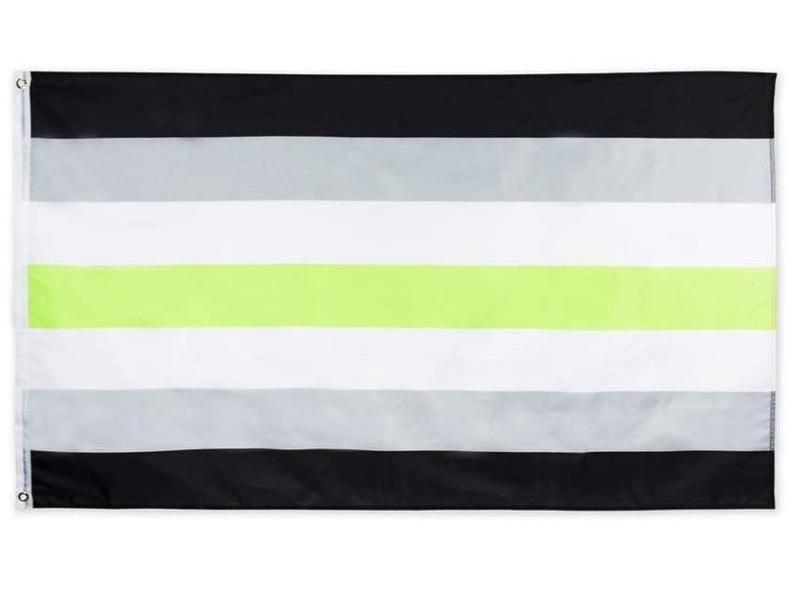 Agender Pride Flag 3 X 5 Black Gray White Vivid Green Etsy In 2020 Pride Flags Striped Canvas Flag