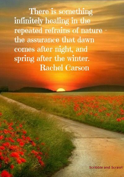quotes on how nature inspires creativity nature nature