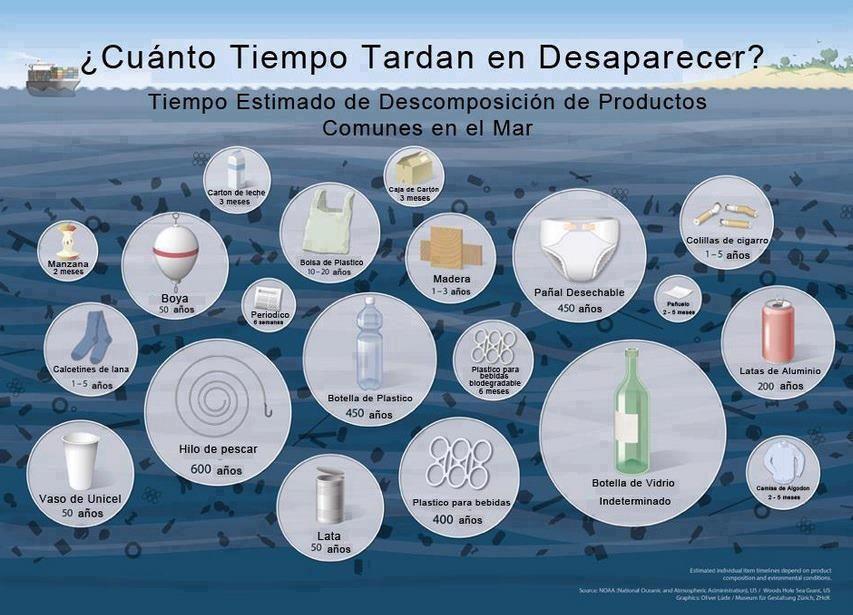 Cuanto tardan en descomponerse productos comunes en el mar