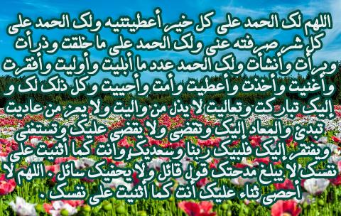 اللهم لا يذل من واليت ولا يعز من عاديت City Photo Photo Aerial