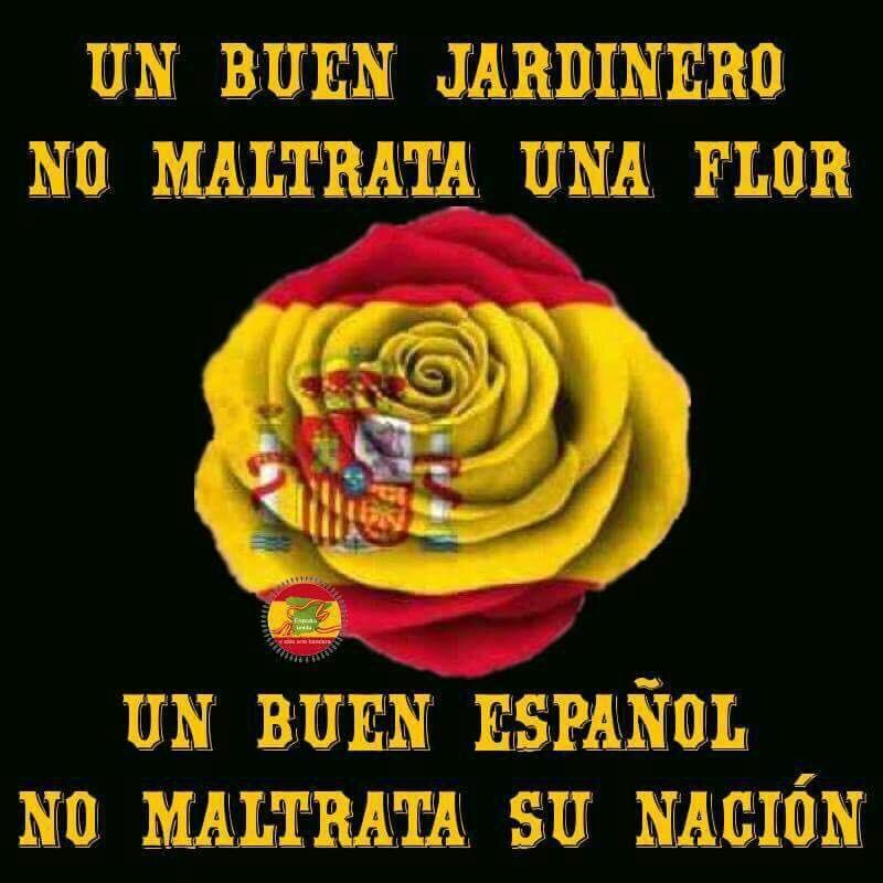 Orgulloso De Ser Español