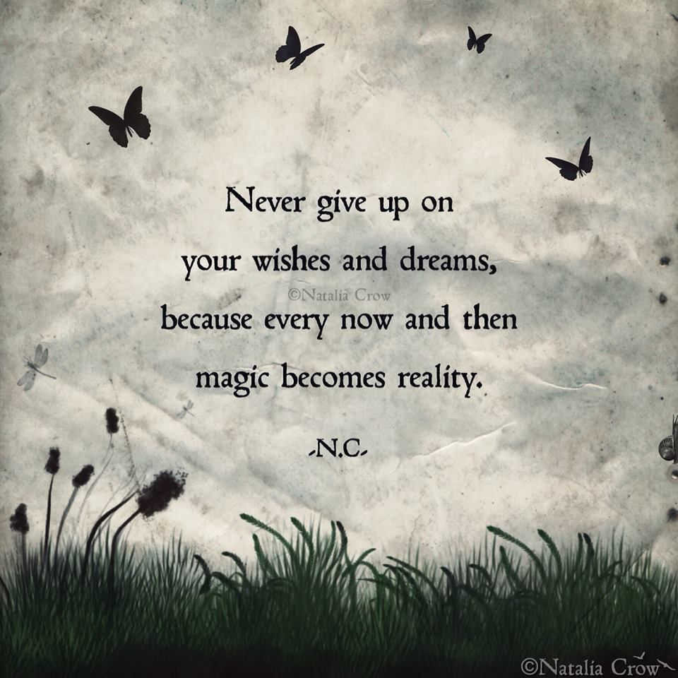 Never Give Up On Your Wishes And Dreams Because Every Now And Then