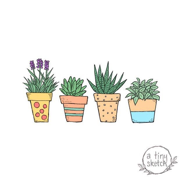 Potted Plant Clipart 4 Png Files With Transparent Backgrounds Hand Drawn Flower Drawing Clip Art Plant Doodle