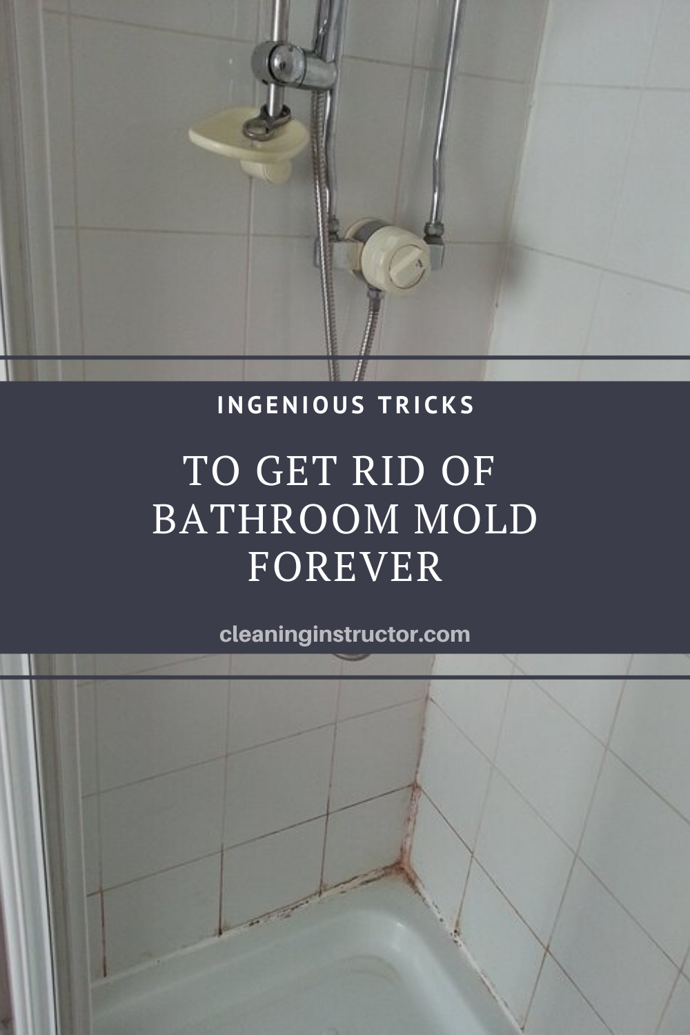 Ingenious Tricks To Get Rid Of Bathroom Mold Forever Mold In Bathroom Bathroom Bathroom Cleaning Hacks