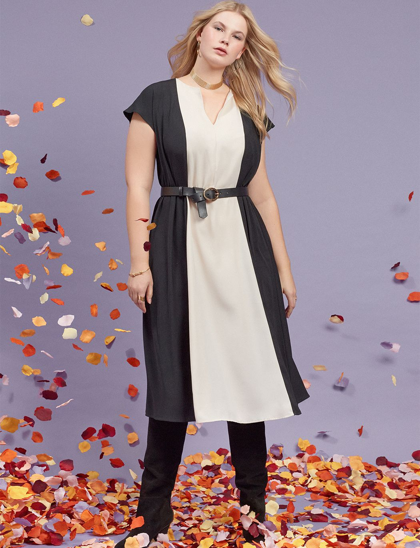 Colorblocked Fit And Flare Dress Women S Plus Size Dresses Eloquii Fit And Flare Dress Plus Size Fashion Plus Size Dresses [ 1370 x 1050 Pixel ]