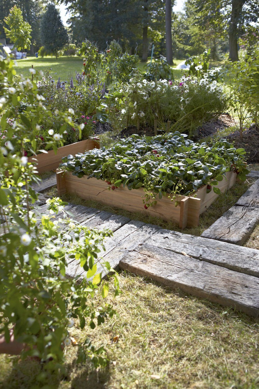 Un Carre Potager Bien Entoure Idees Jardin Carre Potager Jardins