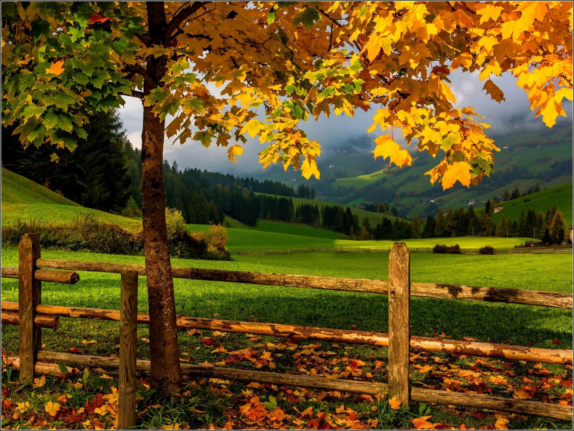 Fall Wallpapers Photography Backgrounds Autumn Landscape Life Is An Adventure Nature Autumn grass field mountain forest trees