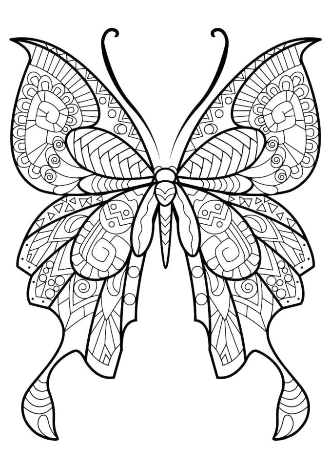 Get This Difficult Butterfly Coloring Pages For Adults 78367