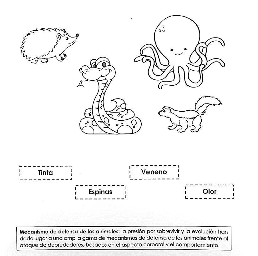 Mecanismo De Defensa De Los Animales Character Comics Fictional Characters