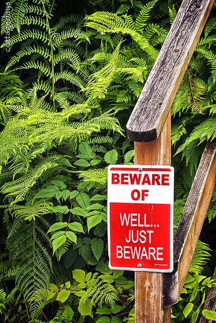 """beware of"" sign at Tenakee Springs, Alaska, by Cottage Days via Flickr."