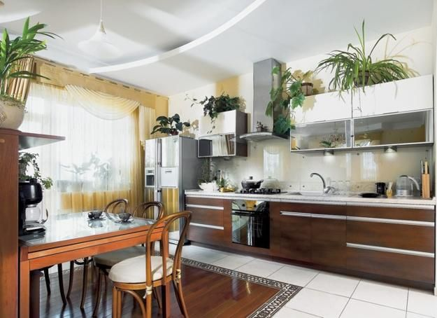 How To Use House Plants For Kitchen Decorating