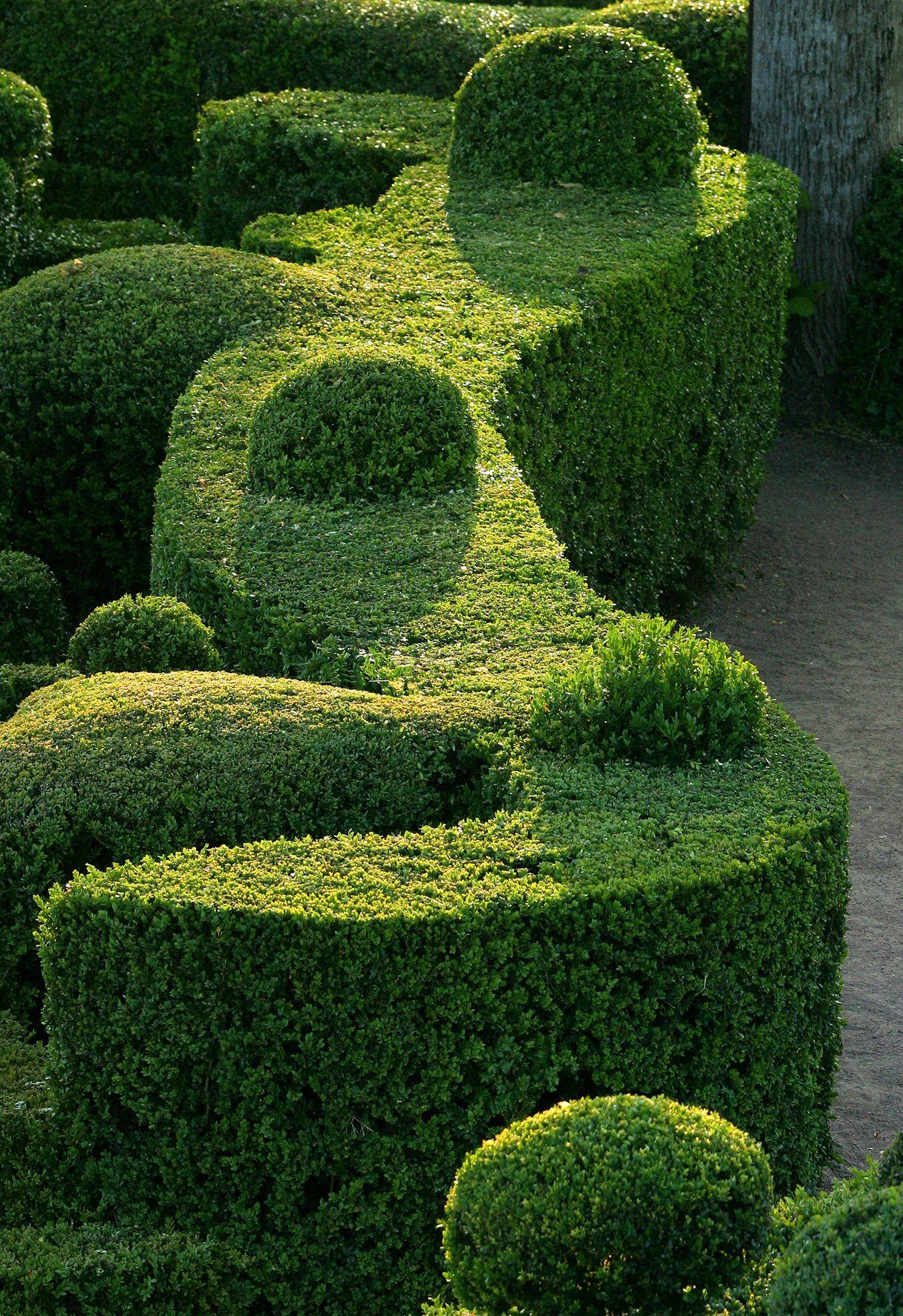 boxwood shapes   Les jardins de Marqueyssac - Belvédère de la Dordogne (tourisme ...