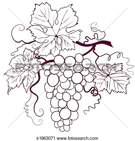 Grapes With Leaves Clipart K1963071 Wine Art Grape Vines Grapes