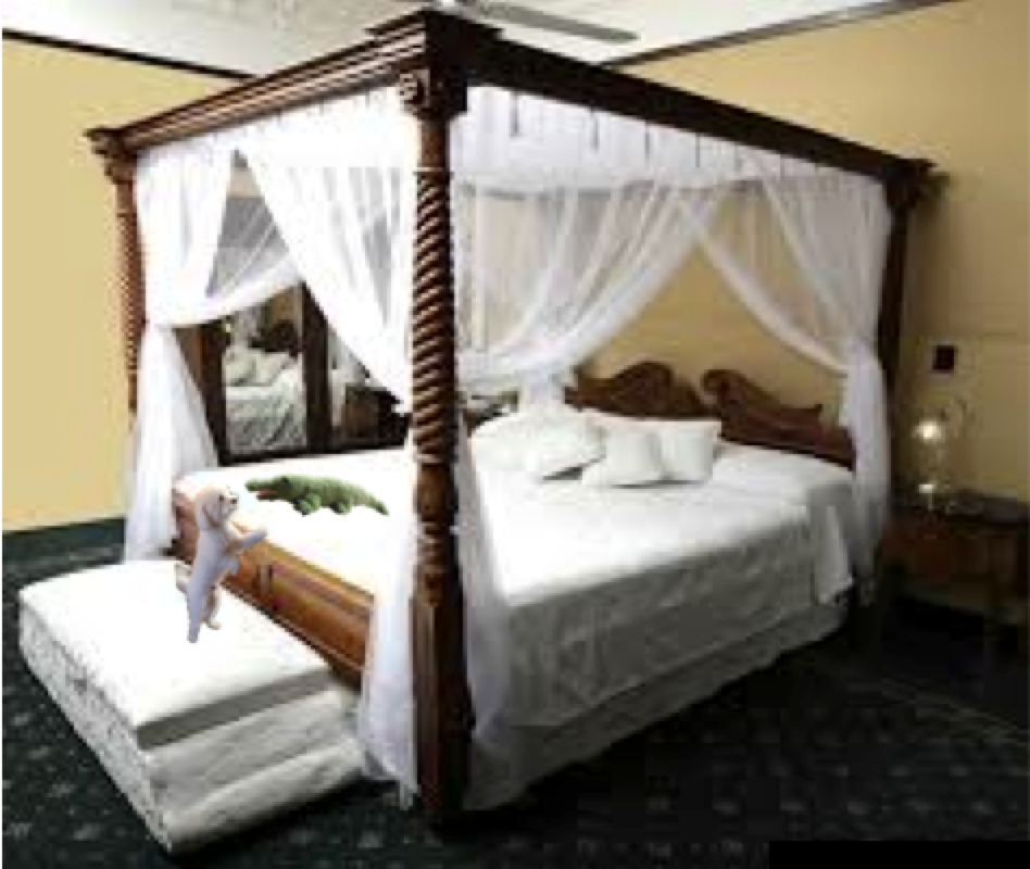 Heaven on Earth! Canopy bed curtains, Poster bed canopy
